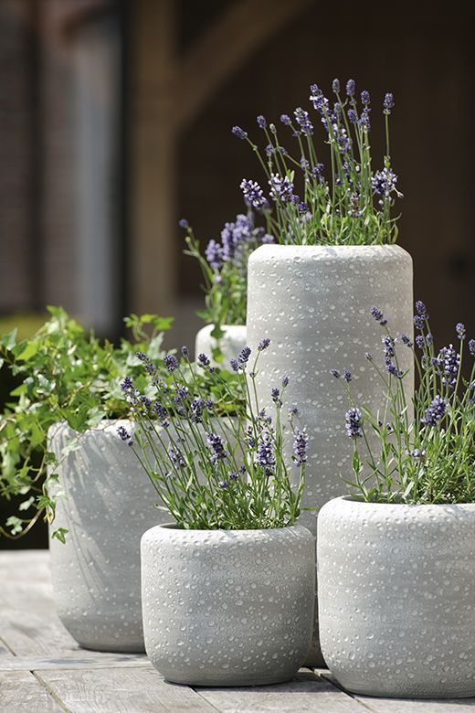 Concrete Round Pots Adamchristopherdesign Co Uk With Images