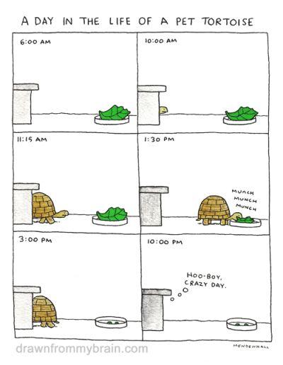 tastefullyoffensive:  (comic by Scott Mendenhall)