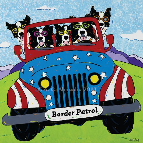 Border Patrol  Border Collies in Red Jeep by AngelaAlexanderArt, $25.00