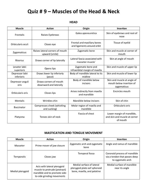 trapezius+muscle+origin+insertion+and+action   muscle list action, Muscles
