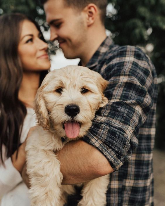 Most dog owners would agree that you don't need a reason to cuddle your dog more often — if anything, a dog's stare and nuzzle is enough to melt any pooch lover's heart. There are, however, actual benefits to cuddling and petting your furry best friend. Here are 6 Strong Reasons You Should Cuddle Your Dog More Often