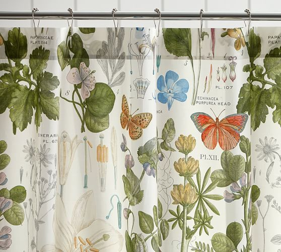 Poppy Botanical Print Shower Curtain | Pottery Barn | bathroom ...