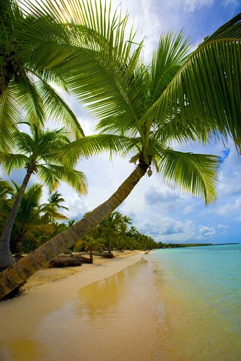 Bavaro Beach,Punta Cana,Dominican Republic - the BEST beach in the Dominican: