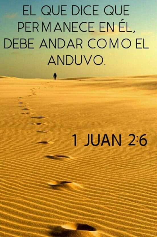1 Juan 2 6 Frases De La Biblia Mensaje De Dios Oraciones Para El Alma