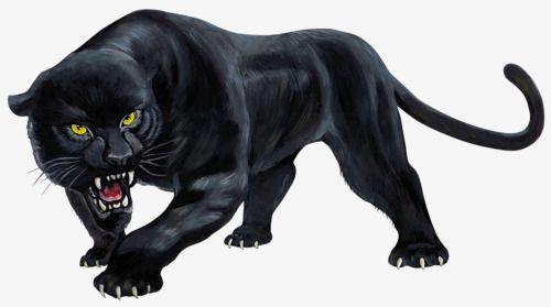 وحشية النمر الاسود Black Panther Tattoo Black Panther Art Black Cat Tattoos