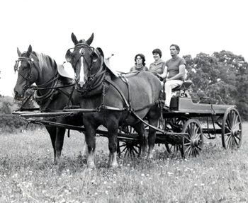 a history of agriculture in the united states Six other states were represented in this group: maryland, new hampshire, new   in the revision of the rules of the house in 1880, the committee on rules.