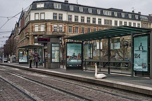 @Art Contemporain Strasbourg
