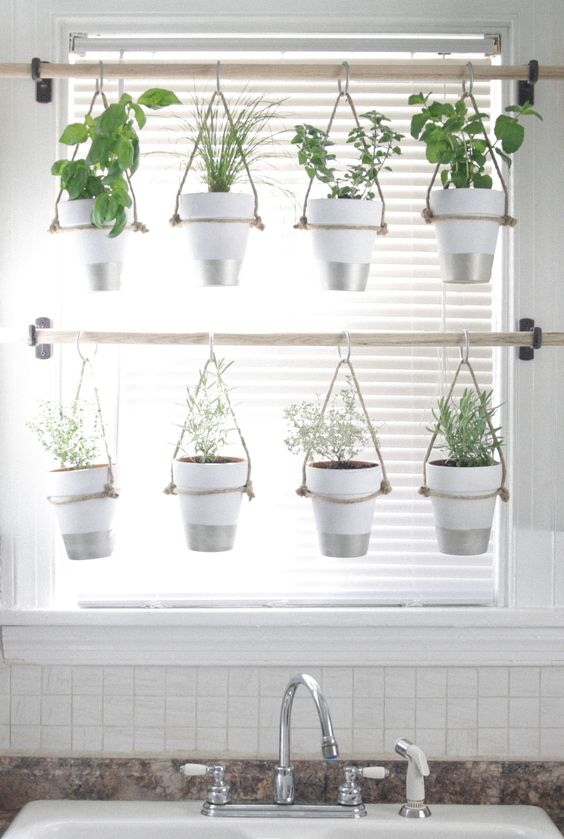 Creative indoor gardening