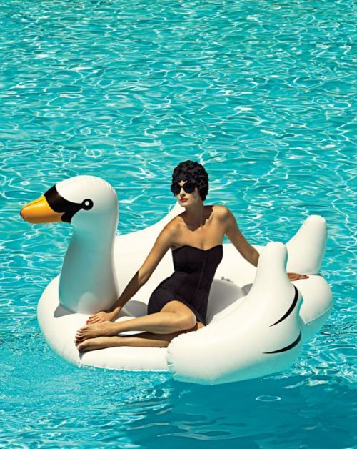 #poolsideglam - The perfect summer accessory- a blow up swan!