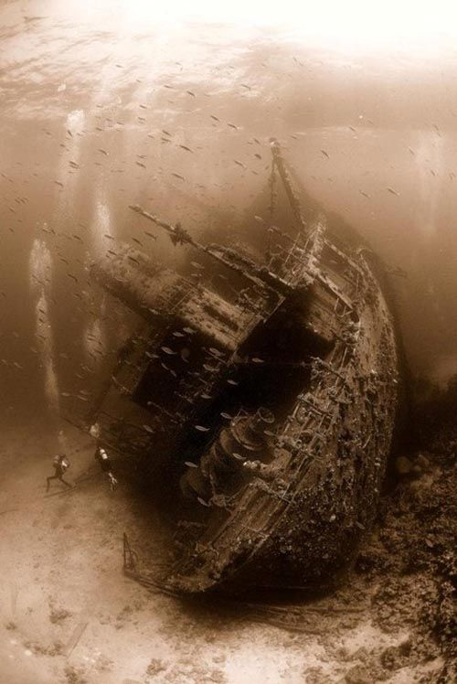 Skeletons of the deep: Red Sea, Bucket List, Shipwreck, Sunken Ships, Scuba Diving, Ship Wrecks, Under The Sea, Abandoned Places