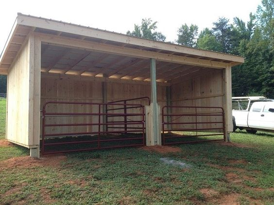 inexpensive mini horse shelters barns easy diy and