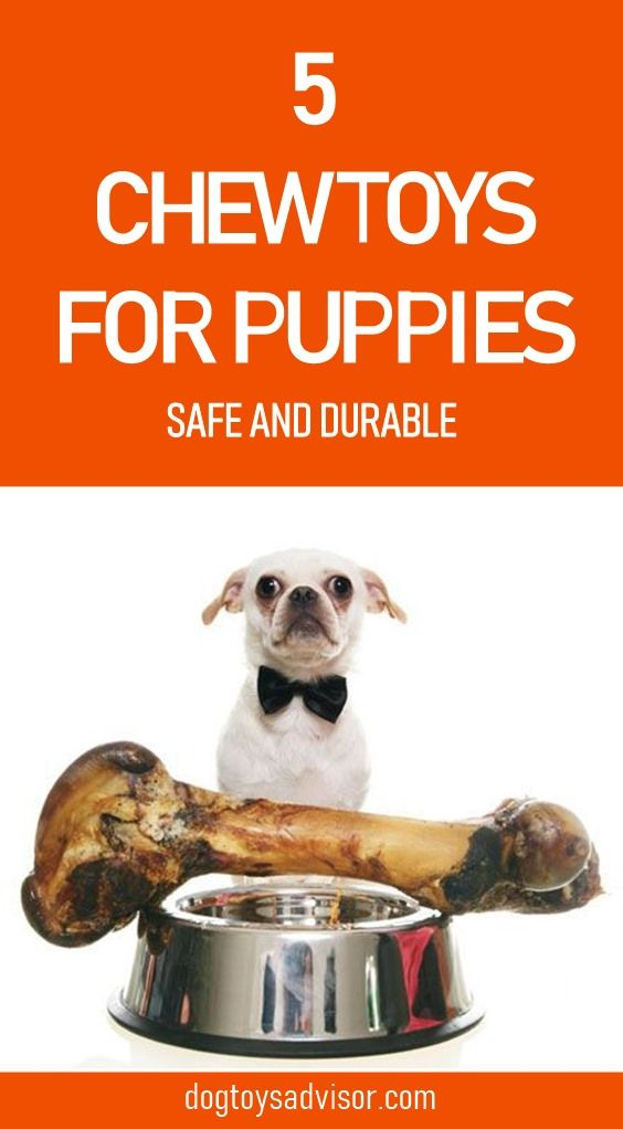 Looking For A Good Safe And Durable Toy For Your Puppy Here S Our Top 5 Picks For The Best Chew Toys For Puppies And Heavy Ch Best Toys For Puppies Puppy Safe