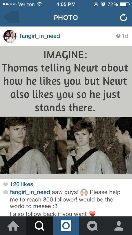 Newt imagine   The Maz...