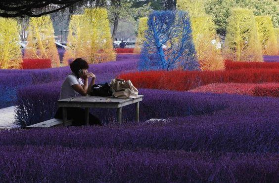 Tailandia `s del campus universitario colorido