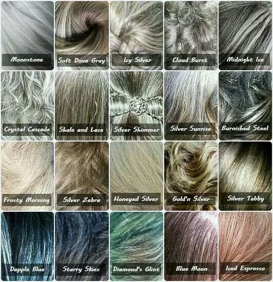 Different Shades Of Grey Hair Hair Pinterest Shades