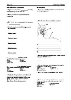 Printables Nervous System Worksheet nervous system and worksheets on pinterest worksheet