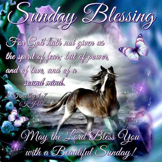 Sunday Blessing,2 Timothy 1:7- May the Lord Bless You with a Beautiful Sunday!!