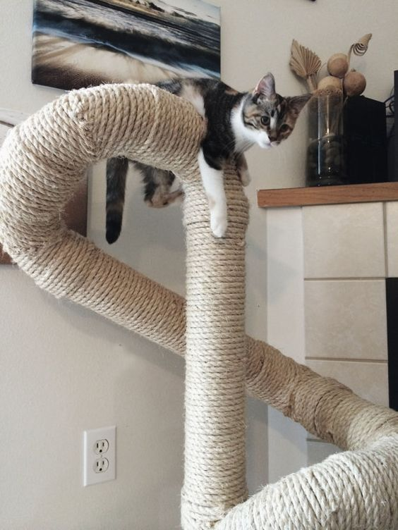 Sisal cat tree by catastrophicreations on etsy things of for Easy diy cat furniture