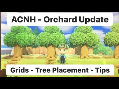 Ac New Horizons Huge Update On Planting Fruit Trees Everything You Need To Know Youtube Planting Fruit Trees Fruit Trees Fruit Plants