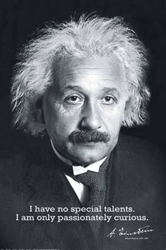 Albert Einstein Poster Ich Habe Keine Besonderen Talente Anke Blog Albert Einstein Zitate Zitate Von Albert Einstein Einstein Zitate