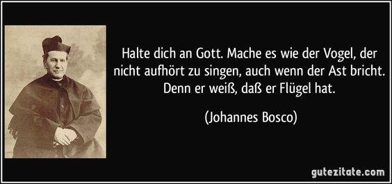 BFG by Roald Dahl Quotes   Halte dich an Gott. Mache es wie der Vogel, der nicht aufhört zu ...