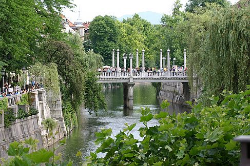 Cobbler's Bridge. This is how green Ljubljana gets in the summer.