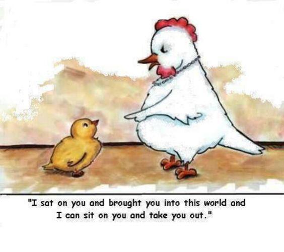 Chickenly motherhood