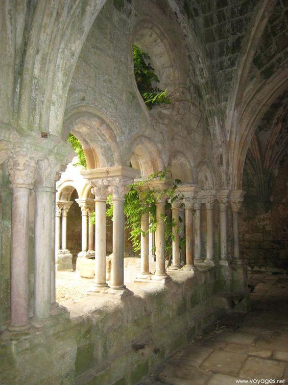 Vegetation envahissant le cloitre,  Abbaye de Fontfroide, Narbonne, France.