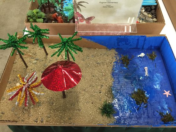 Love what the students created at the March 2016 Mini Landscape Competition at the Fresno Home & Garden Show