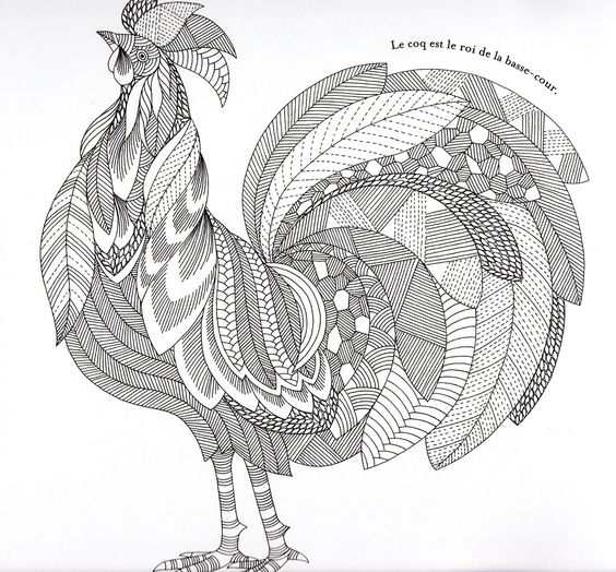 Abstract Bird Coloring Pages : Animaux fantastiques rooster abstract doodle zentangle