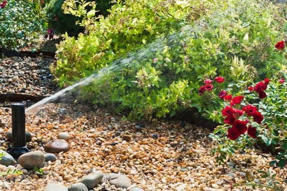 Irrigation Installation   Cost of Sprinkler System   HouseLogic - Pro vs. DIY cost & planning