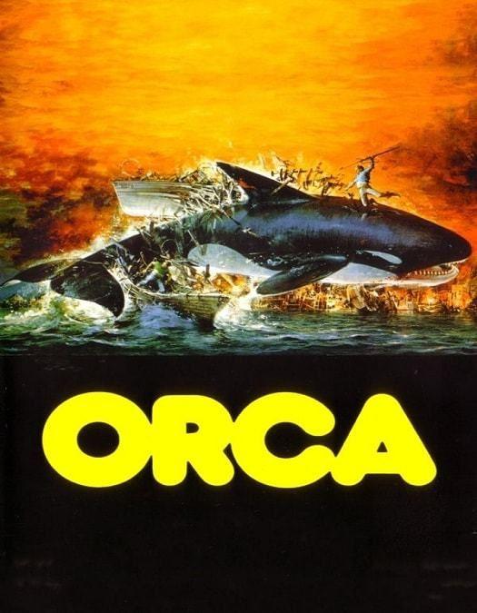 Orca A Baleia Assassina Dublado 1977 Baleia Assassina Filmes De Aventura Baleia