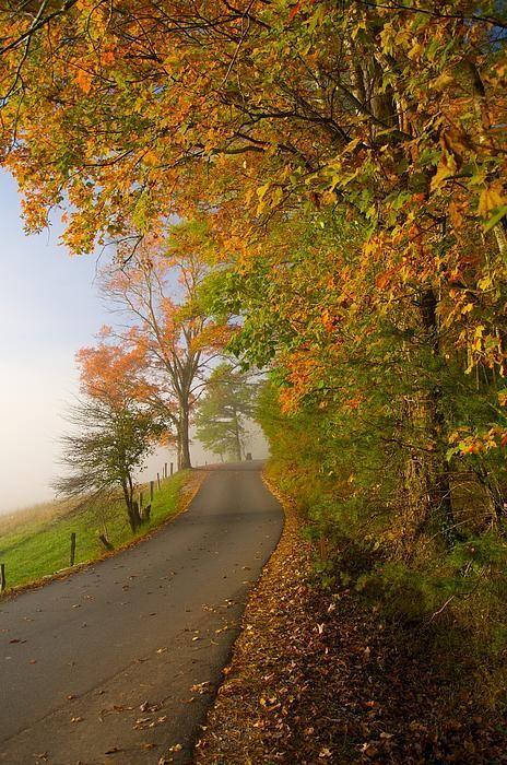 Autumn - Loop Road in Cades Cove