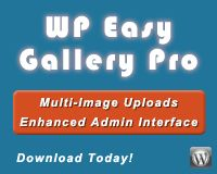 WP Easy Gallery Pro is an easy to use WordPress gallery plugin that allows you to manage multiple image galleries through an easy to use admin interface.