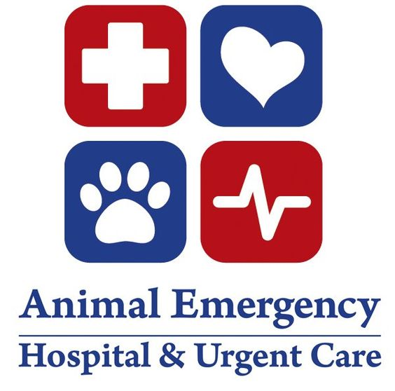 animal emergency hospital and urgent care is a fully
