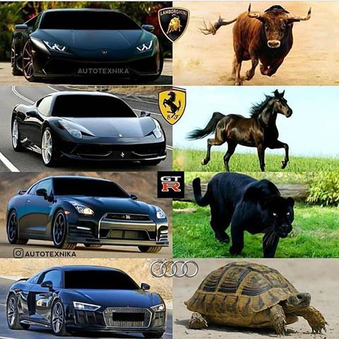 Supercars Twinturbo Instagram Photos And Videos Super Cars Funny Car Memes Sports Cars Luxury
