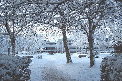 Grosvenor House, Runcorn in the snow