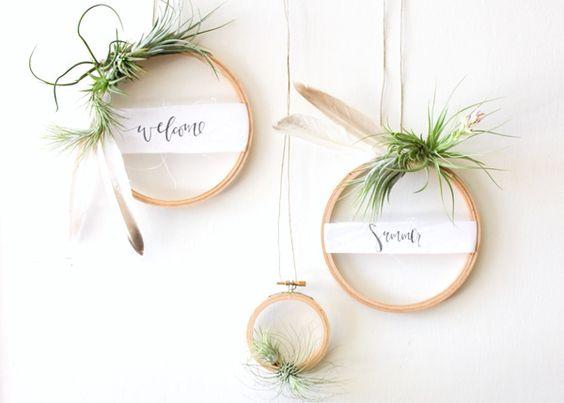 How to display plants indoor (42 DIY Projects):