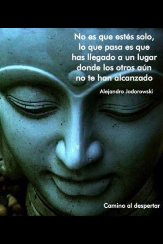 Camino al despertar - Alejandro Jodorowski