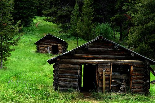 Abandoned cabins