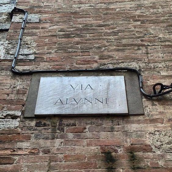 """Alere, latino, """"far crescere"""". In Via Alunni c'era l'orfanotrofio comunale. Tutti i trovatelli ricevevano il cognome Alunni quando uscivano, """"cresciuti"""". Per questo nelle pagine bianche perugine gli """"Alunni"""" occupano una pagina e mezza."""