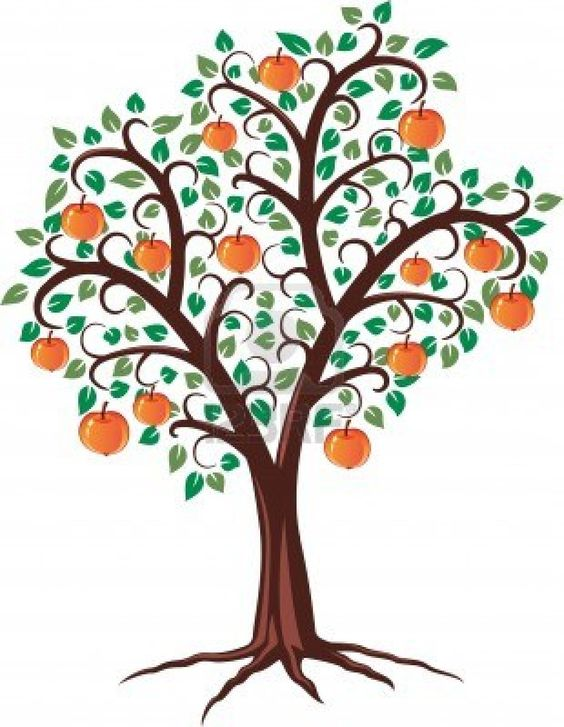 Gallery For gt Simple Apple Tree Drawing