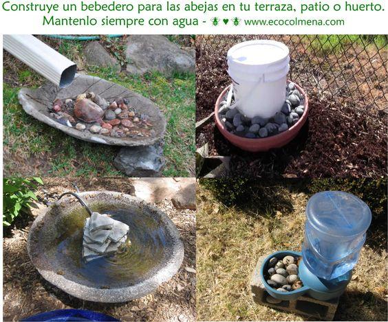 Las abejas necesitan agua para el desarrollo de sus crías. No tengas miedo, las abejas te lo agradecerán