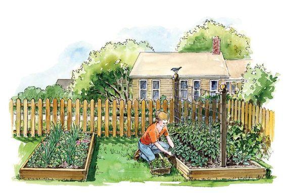 Companion Planting: Gardening Cara, Gardening Vegetable, Companion Gardening, Companion Plantings, Companion Plants, Companion Planting Flowers, Gardening Environmental, Vegetable Gardens