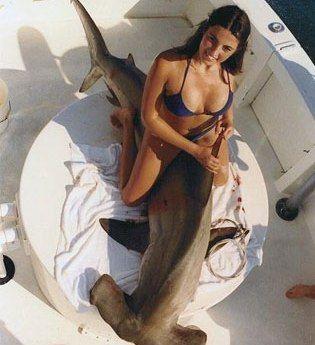 sharkshagger.