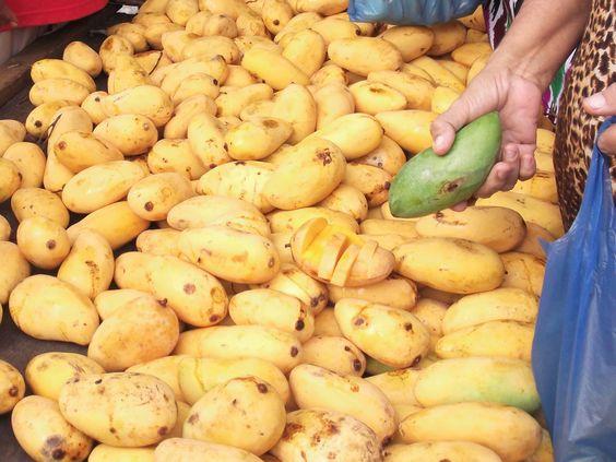 mango , Malaysia