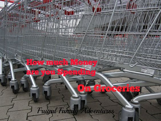 How much money are you spending for Groceries?