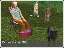 Around the Sims 2 | Objects | Outdoor | Camping