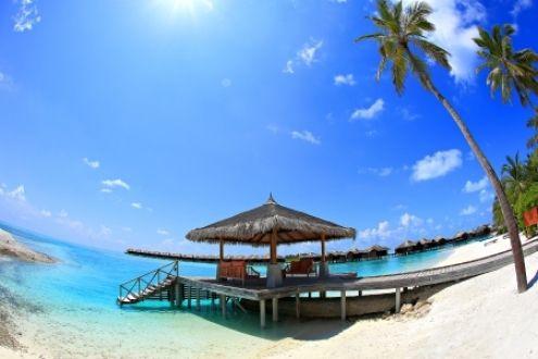 Maldivas - Maldivas, Céu, Palmeira, Areia, natureza, mar, Bungalow, sol, feriado, férias