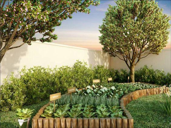 imagens de jardim horta e pomarHorta Em Casa